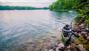Los Mejores Motores Trolling Para Kayak